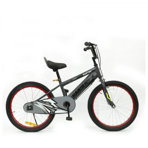 Bicicleta color gris